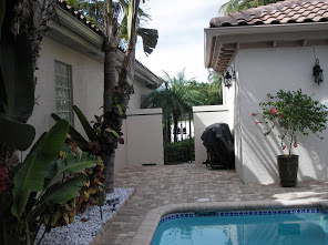 Patop and Pool Deck Installation 2