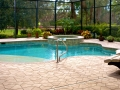 Brick pool coping, swimming pool with plants and hardscape design, oval pool, and hot tub pool